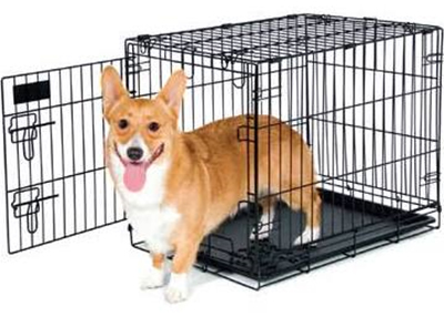 Houston Humane Society Crate Training Tips from HHS
