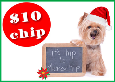 Houston Humane Society - December Microchip Event