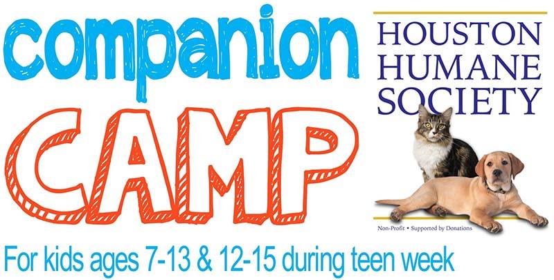 camp-header-image