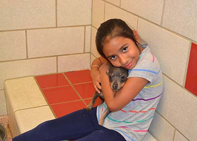 Houston Humane Society - Companion Camp 6-13