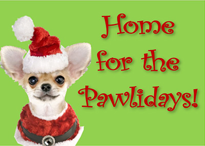 Houston Humane Society - Home for the Pawlidays!