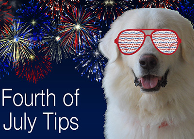 Houston Humane Society 4th of July Pet Tips