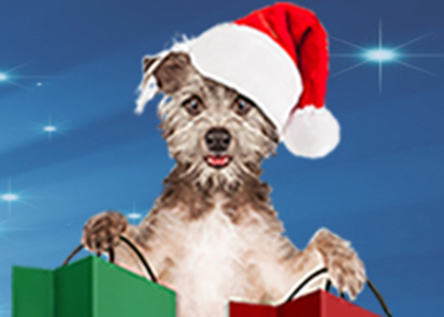 Houston Humane Society - Pawliday Market