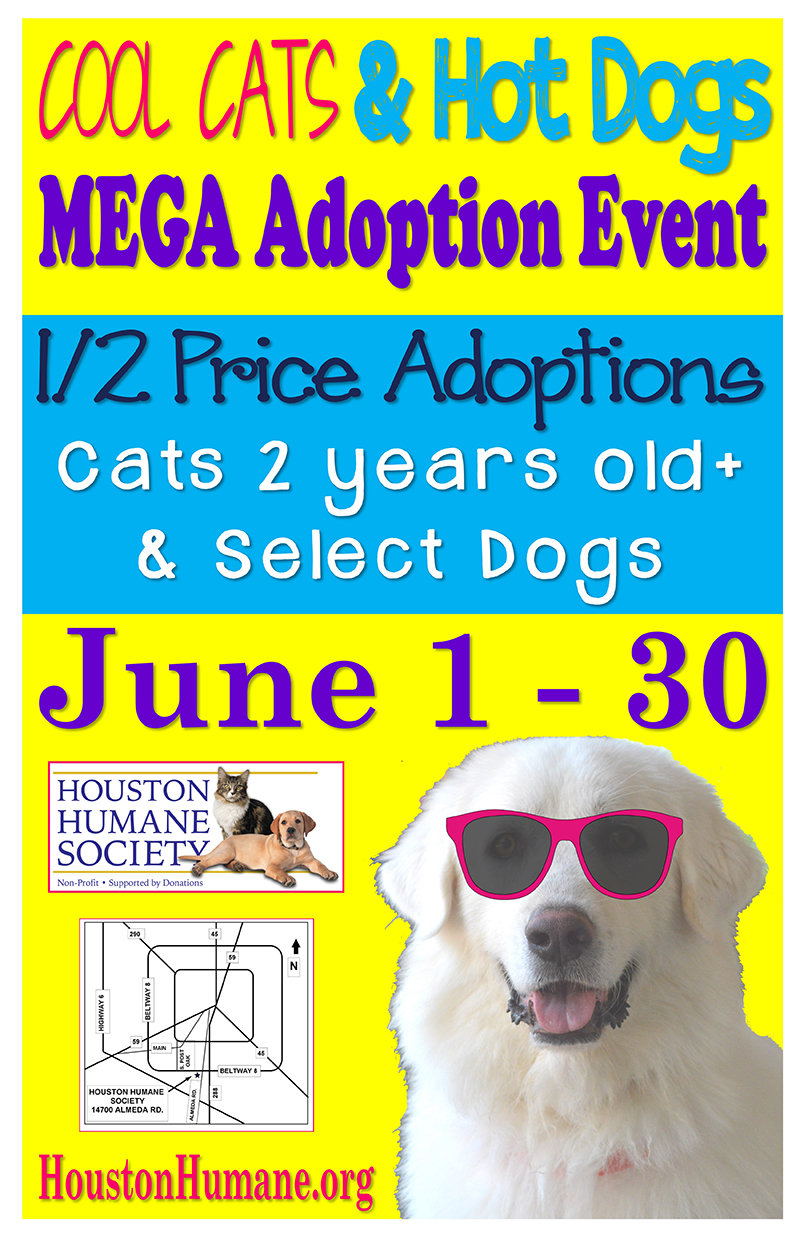 june-adoption-special(1)