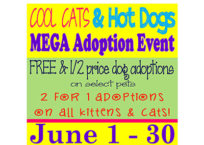 Houston Humane Society - Cool Cats & Hot Dogs