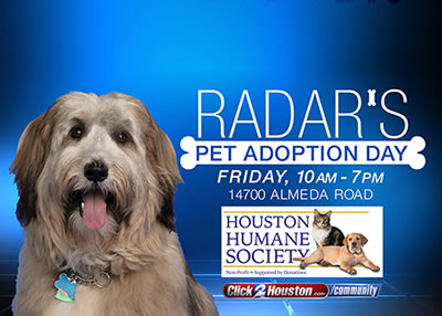 Houston Humane Society Radar's Pet Adoption Day
