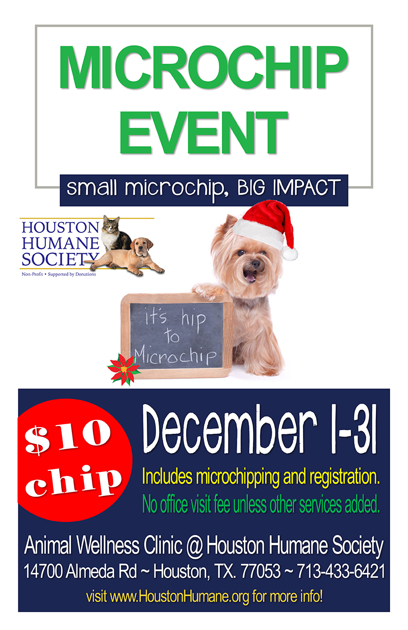 10-microchip-special-poster-december