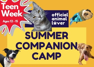 Houston Humane Society - Summer Companion Camp Teen Week