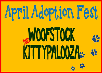 Houston Humane Society - Woofstock and Kittypalooza