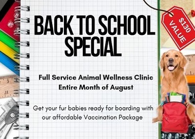Houston Humane Society - August Clinic Special