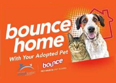Houston Humane Society - Bounce Home with Your Adopted Pet