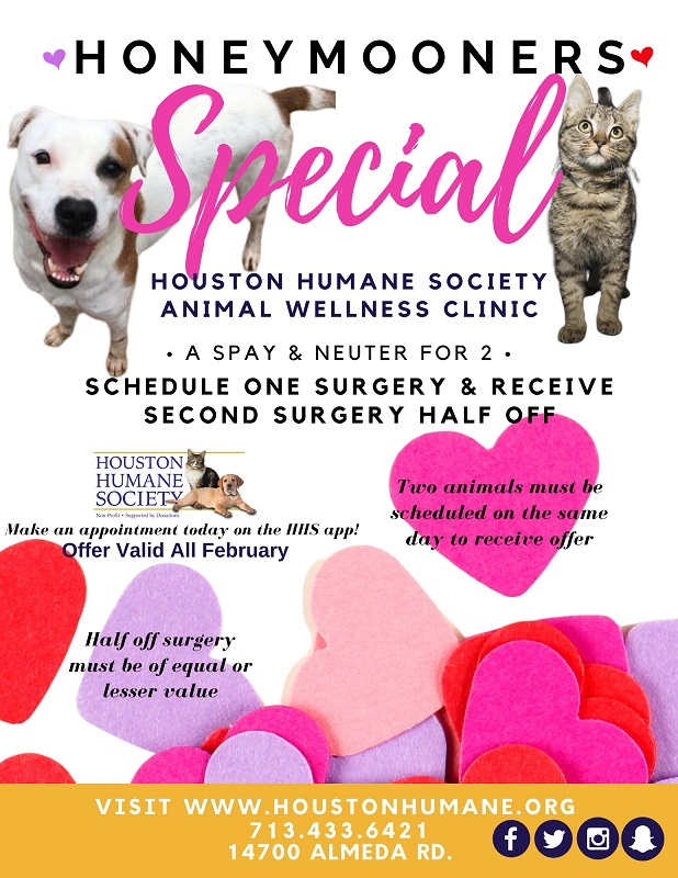 clinic-feb-special-flyer