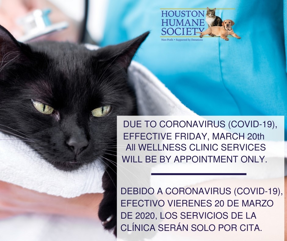 covidcliniccat