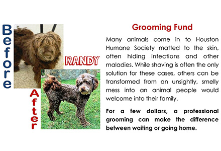 Grooming Fund Houston Humane Society