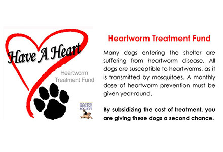 Heartworm Treatment Fund Houston Humane Society