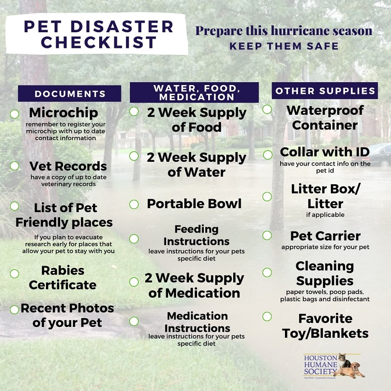 hurricane-check-list