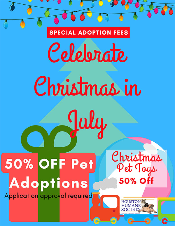 july-adoptions-promo-flyer