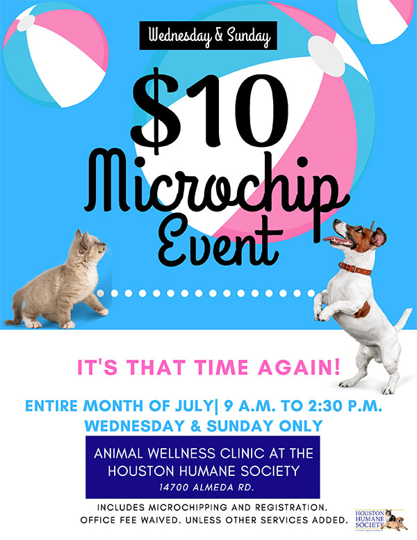 july-clinic-promotion-flyer
