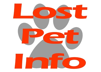 Houston Humane Society What to do if your pet is lost