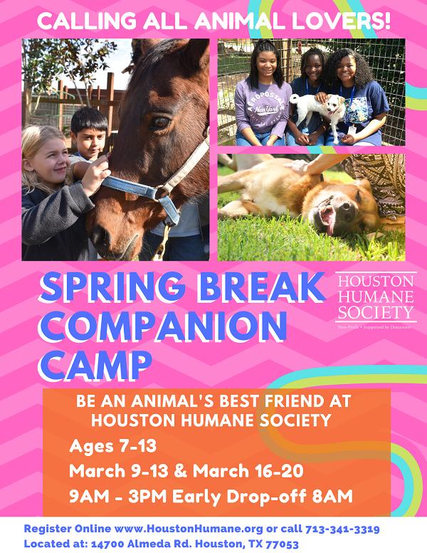 spring-break-2020-flyer