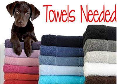Houston Humane Society Towels Needed
