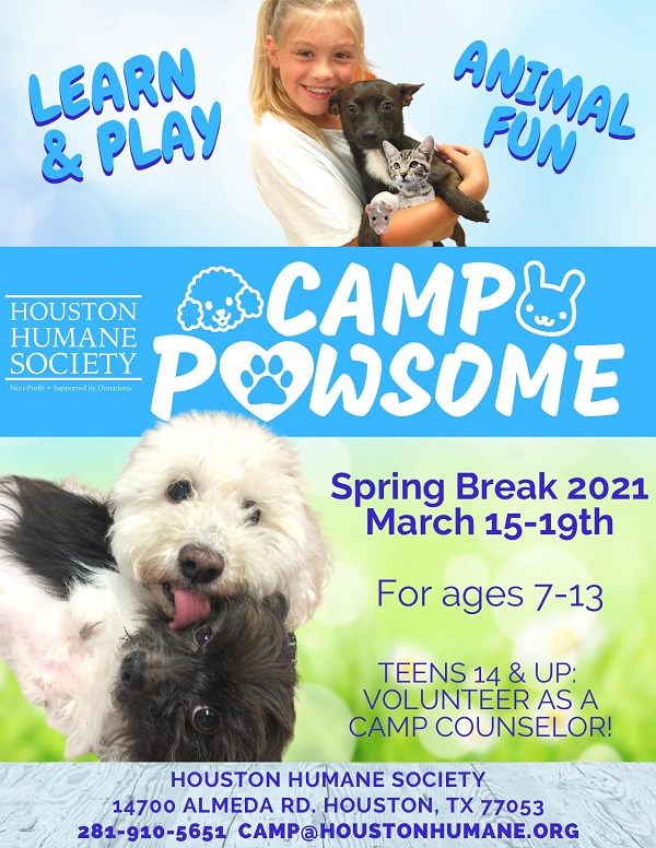 webpage-graphic-camp-pawsome-spring-break-2021